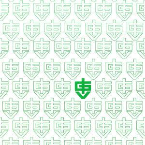 Das erste Logo von IGV